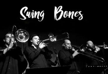 Teaser Swing Bones